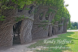 Tree-Sculpture-2.jpg