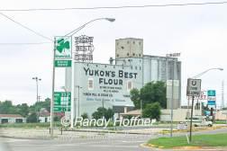 yukons-best-1.jpg