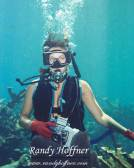 An Underwater Photographer.jpg